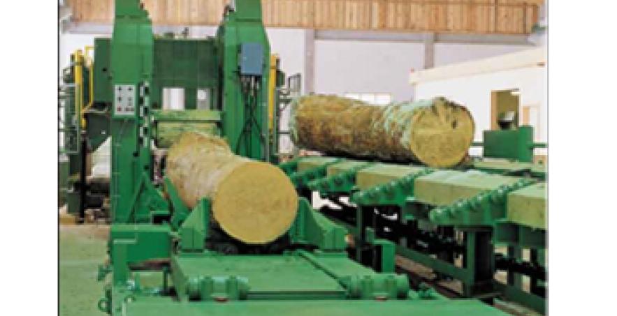 Dây chuyền máy xẻ gỗ MXG-01